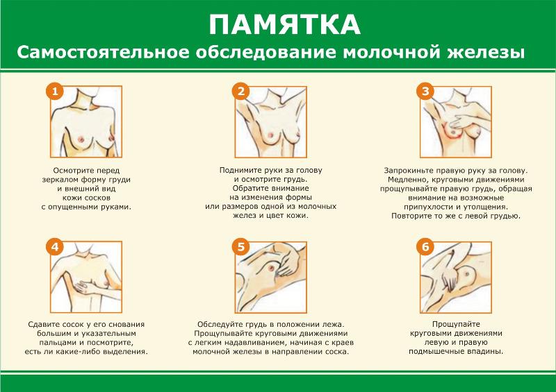 Щитовидная железа как проверить самостоятельно - Stroy portal